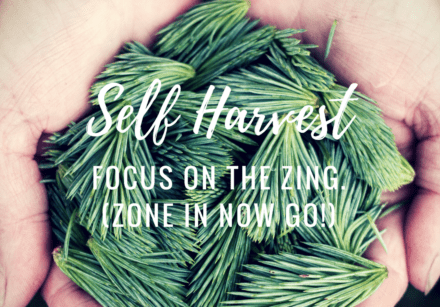 Self harvest exercise - Emma Lannigan